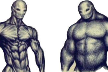 masa czy rzeźba - ceny sterydów